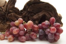 Free Red Grapes With Root Royalty Free Stock Photography - 16948697