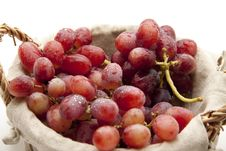 Free Grapes With Water Drops Stock Photography - 16948752