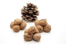 Free Walnuts Royalty Free Stock Images - 16948939