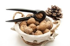 Free Walnuts And Nutcrackers Stock Photo - 16948940