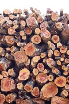 Free Wood / Log / Timber Stock Photos - 16949743