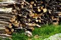 Free Wood Royalty Free Stock Image - 16954766
