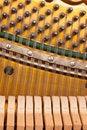 Free Piano Mechanics Royalty Free Stock Photos - 16957138