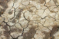 Free Parched Earth Indicating Drought Stock Photos - 16958993