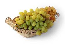 Free Bunch Of Grapes Stock Photos - 16954063