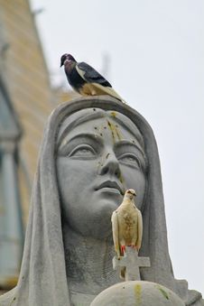 Free Pigeons On Statue Royalty Free Stock Photos - 16955788