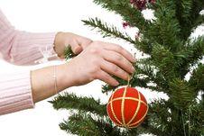Free Christmas Tree Royalty Free Stock Image - 16956176