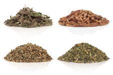 Free Medicinal And Magical Herbs Royalty Free Stock Photo - 16956935