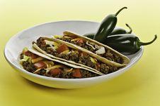 Free Sunny Taco Stock Image - 16958511