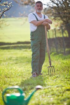 Free Senior Man Gardening In His Garden Royalty Free Stock Photos - 16959118