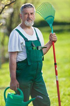 Free Senior Man Gardening In His Garden Royalty Free Stock Photography - 16959457