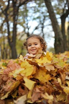 Free Girl On The Leaves Royalty Free Stock Photo - 16959565