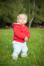 Free Adorable Baby Stay On Green Grass Near Forest Stock Images - 16964874