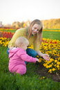 Free Young Woman Show Flowers  To Baby Royalty Free Stock Image - 16968566