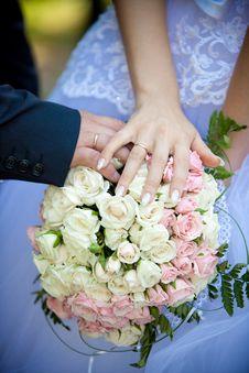 Free Wedding Royalty Free Stock Image - 16960236