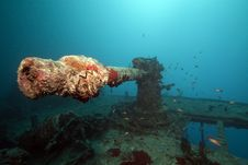Free Weapons Of The Thistlegorm Wreck. Royalty Free Stock Image - 16960476