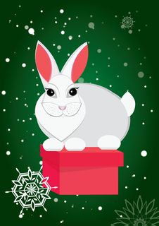 Free Rabbit And Gift Stock Photography - 16960962