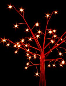 Free Celebrating Lighting Tree Royalty Free Stock Photography - 16961167