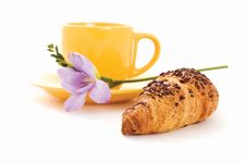 Free Croissant, Cup Of Coffee And Flower Royalty Free Stock Images - 16961569