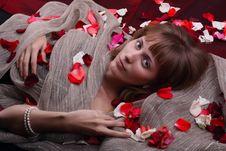 Free Girl Stock Photography - 16964382