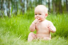 Baby Sitting On Green Grass Royalty Free Stock Photography