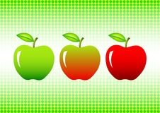 Free Three Apples Stock Photos - 16965233