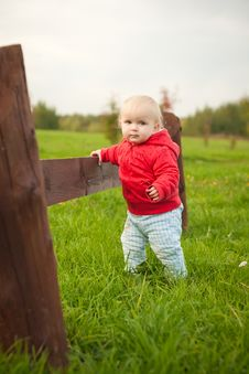 Free Baby Walk By Grass Along Wood Fence Stock Photography - 16965292