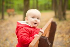 Free Cheerful Baby Stay On Wood Bench Stock Image - 16965431