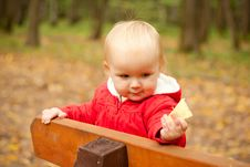 Free Baby Stay On Wood Bench In Park Royalty Free Stock Photos - 16965438