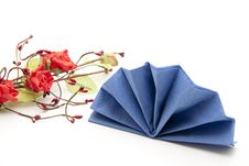 Free Napkin Folded With Rose Stock Photo - 16965450