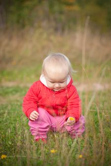 Adorable Baby Sit Near Yellow Flower Royalty Free Stock Image