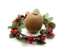 Free Kiwi In The Wreath Royalty Free Stock Images - 16965899
