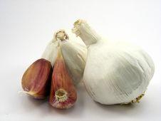 Free Garlic Bulb & Cloves Royalty Free Stock Photo - 16968005
