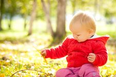 Baby Play With Yellow Leafs Under Trees Stock Photography