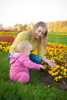 Young Woman Show Flowers  To Baby Royalty Free Stock Image