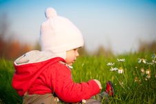 Free Adorable Baby Sit On Hill And Touch Flowers Stock Images - 16968644