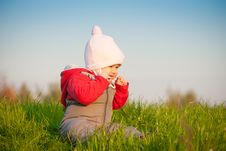 Free Baby Sit On Top Of Hill And Taste Grass Royalty Free Stock Photo - 16968675