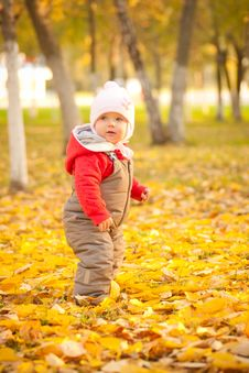 Free Cute Baby Walking In Park Near Trees Stock Photo - 16968680
