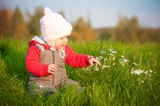 Free Baby Sit On Top Of Hill And Touch With Flowers Stock Image - 16968701