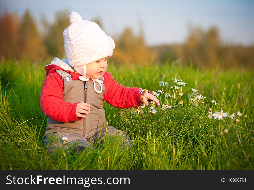 Baby sit on top of hill and touch with flowers