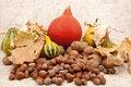 Free Autumn Fruits Stock Photo - 16970110