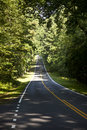 Free Beautiful Scenic Country Road Curves In Forest Royalty Free Stock Photography - 16972907