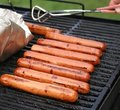 Free Cooking Out! Stock Photo - 16977340