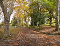 Free Path Covered With Autumn Leaves Royalty Free Stock Image - 16978156