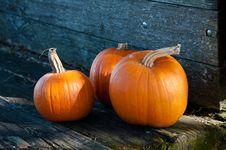 Free Three Orange Pumpkins On The Wooden Cart Royalty Free Stock Image - 16971136