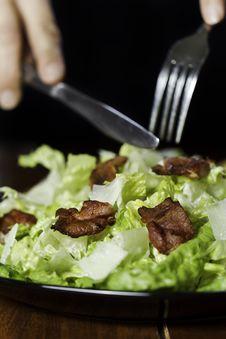 Free Eat Caesar Salad Royalty Free Stock Photos - 16971938