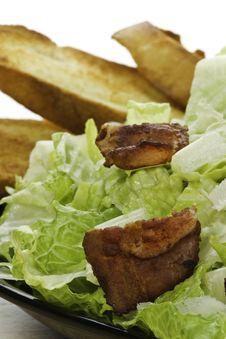Free Eat Caesar Salad Royalty Free Stock Photography - 16971967