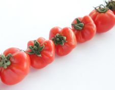 Ripe Red Tomatoes On White Background Royalty Free Stock Image