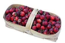 Free Wild Strawberry In A Basket Royalty Free Stock Photos - 16973208