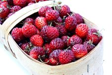 Free Wild Strawberry In A Basket Stock Photos - 16973223